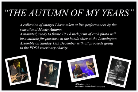THE AUTUMN OF MY YEARS EXHIBITION BY ANDREW LOCK FLYER